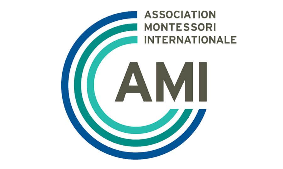 ami logo new 1